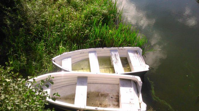 łódź wędkarska z aluminium